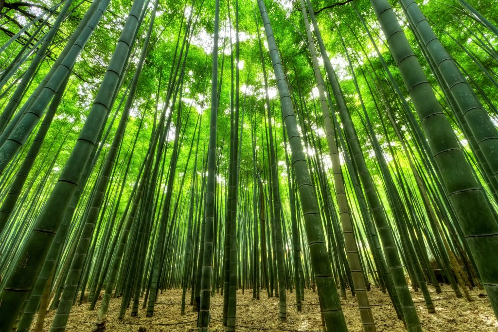 bamboe tijk matras